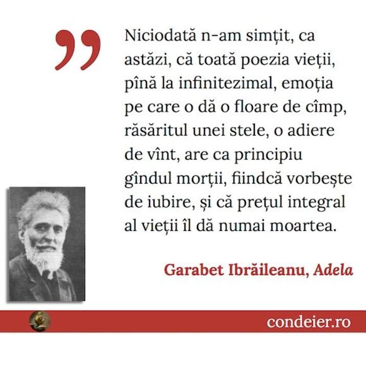 Ibraileanu Adela citat