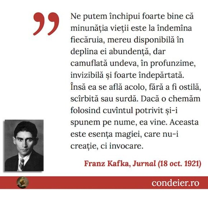 Franz Kafka Jurnal