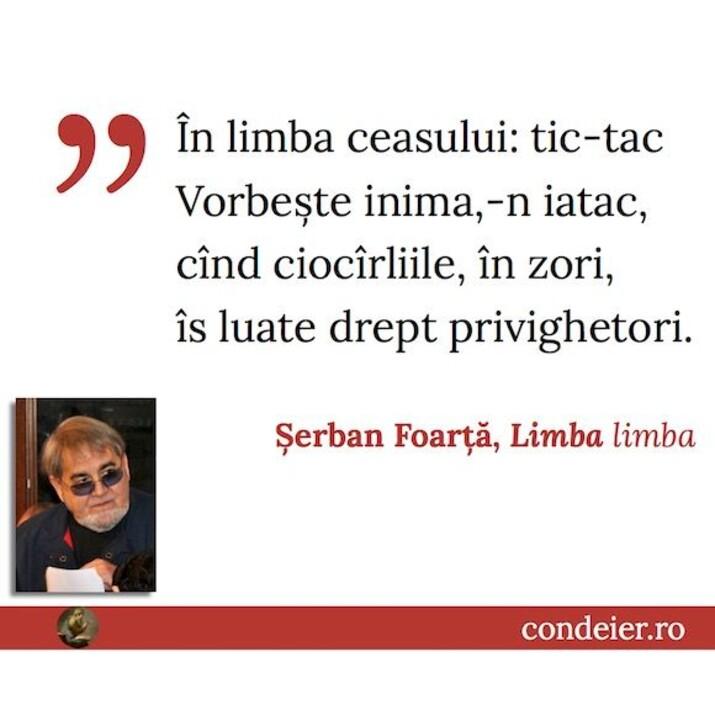 citat Șerban Foarță