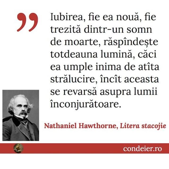 citat Nathaniel Hawthorne