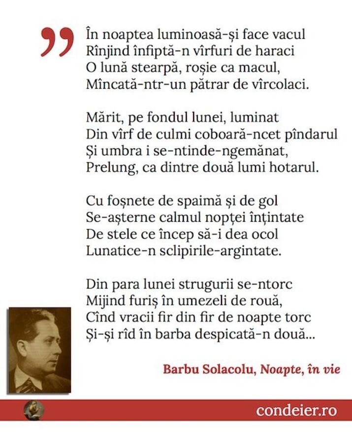 poem Barbu Solacolu
