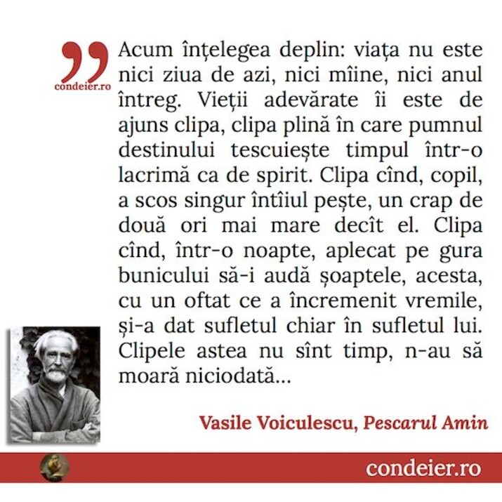 citat Vasile Voiculescu