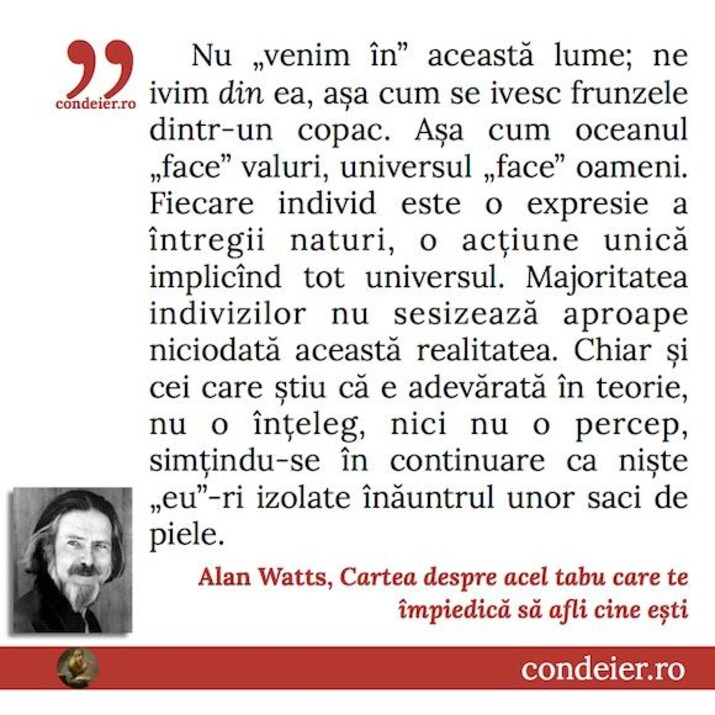 citat Allan Watts
